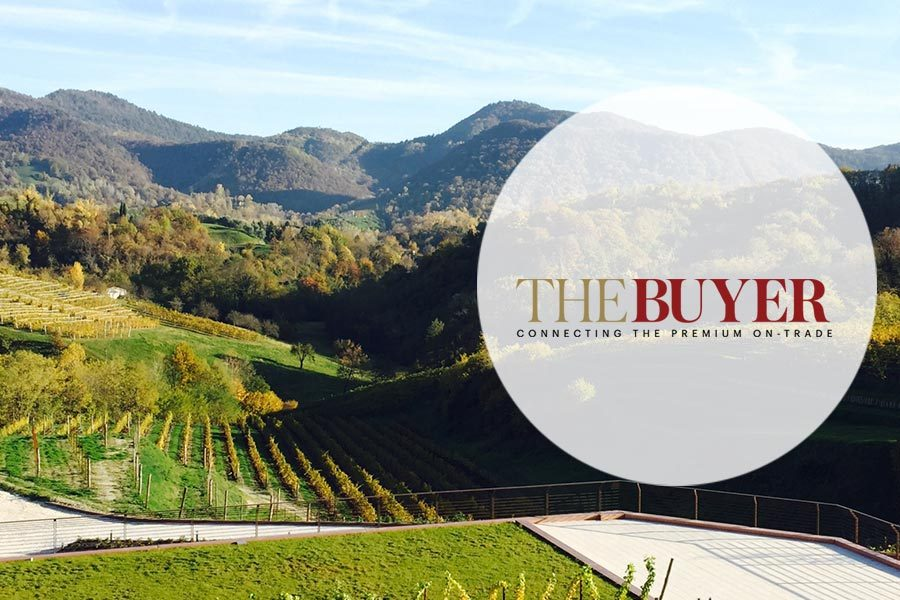 The Buyer | Asolo Prosecco Superiore DOCG